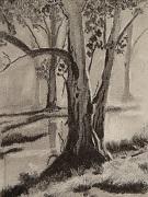 szén fák