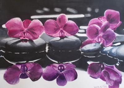 Orchideák.jpg